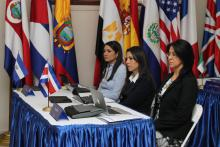 Ad-Hoc Working Group to Discuss, Analyze and Define Objectives on the Topic of Extra- Continental Migration Flows in the Region